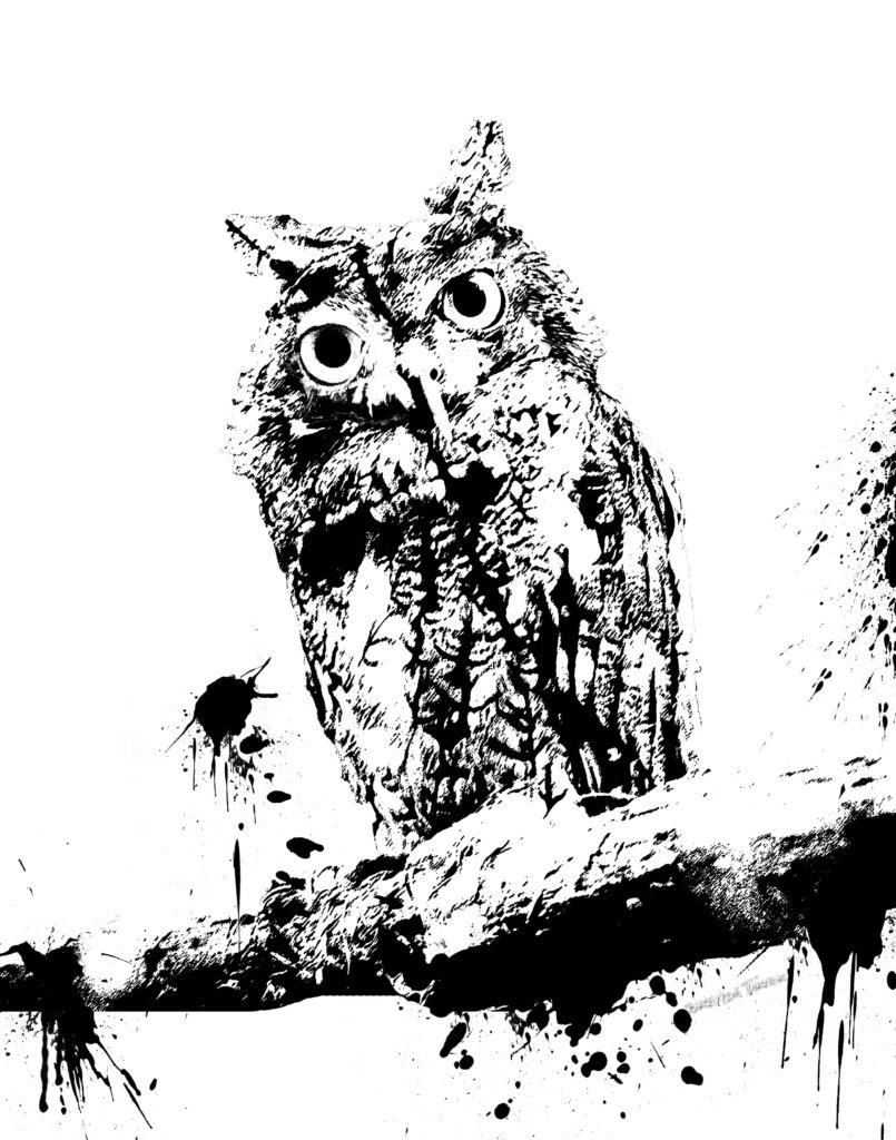 owl ink sml