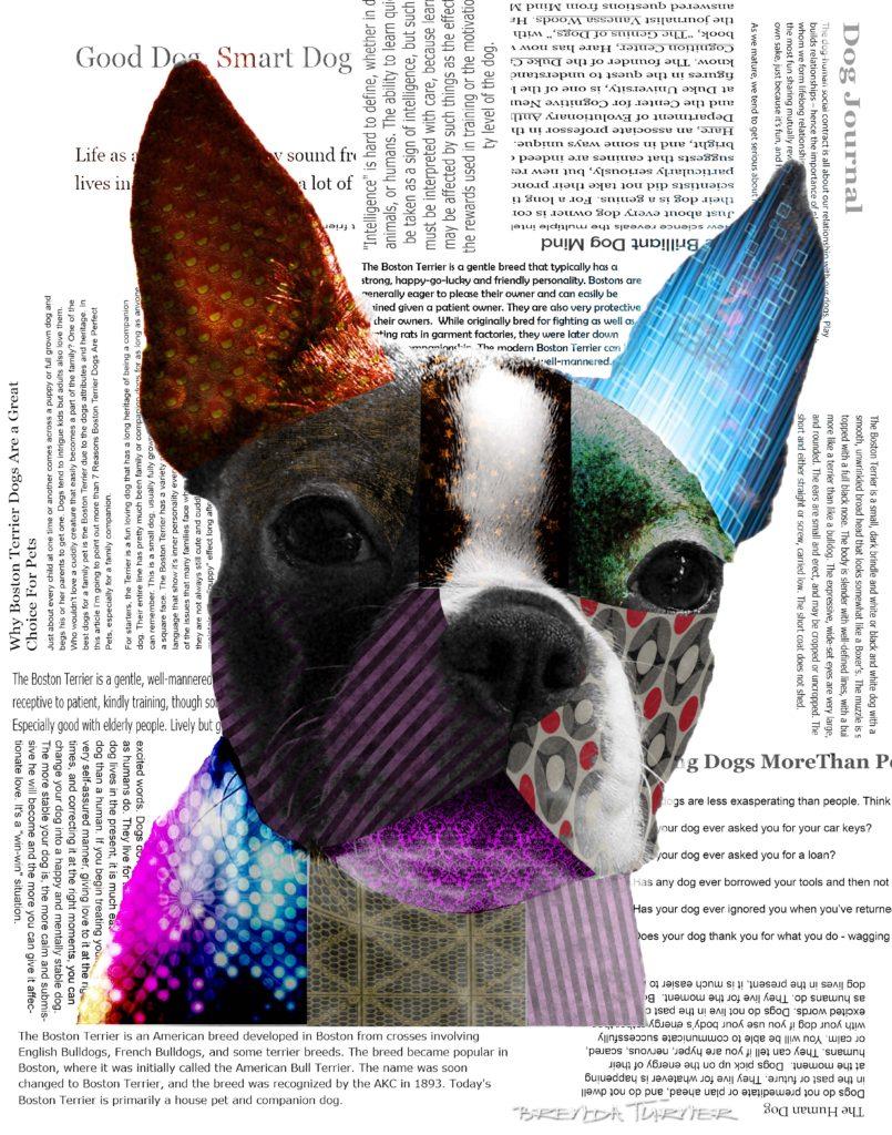 puppy news sml