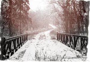snowy path (2)